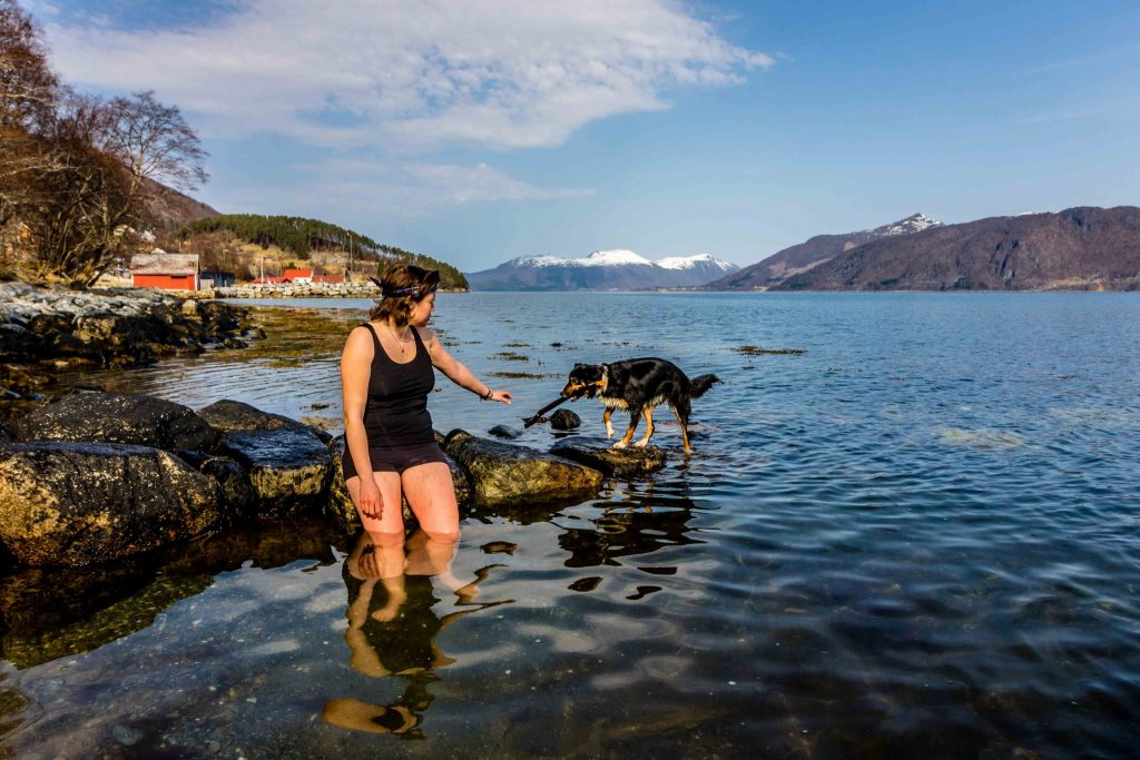 TrustedHousesitters. Kell teaching Tess, the dog, how to swim in the sea between the Norwegian frjods