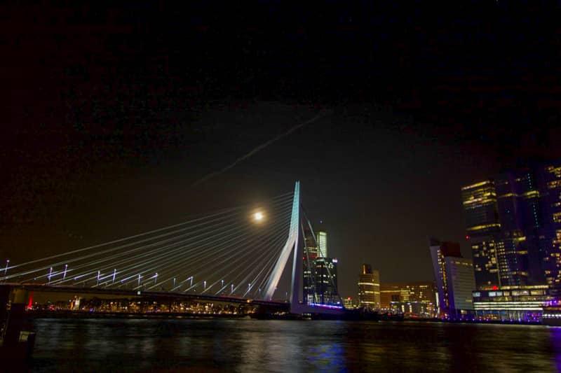 Erasmus bridge by night in Rotterdam