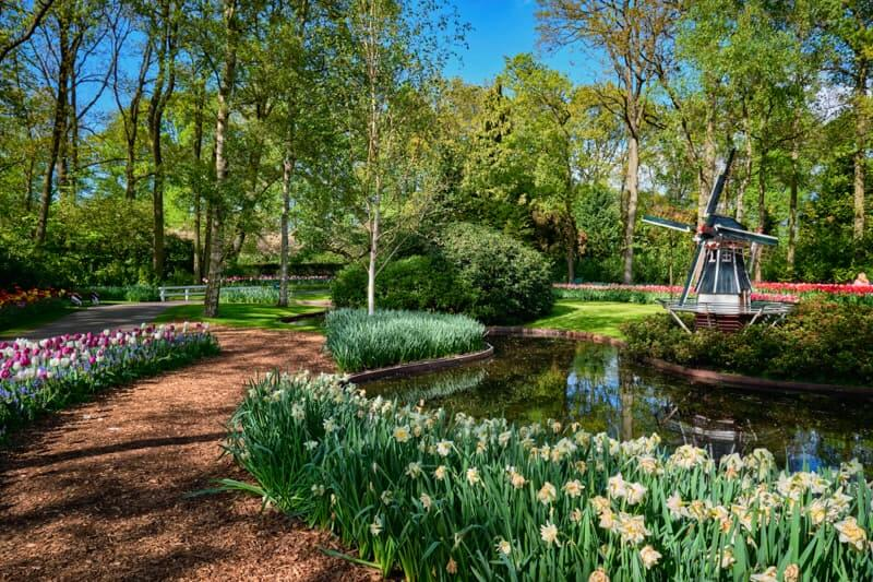 Keukenhof how much does it cost?