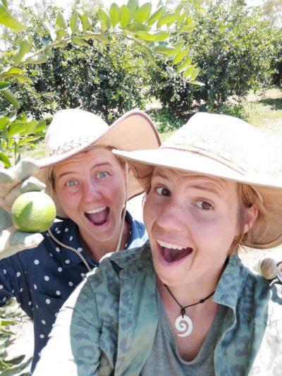 Fruit picking backpackers Australia
