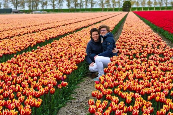 Visit the Tulips in the Netherlands