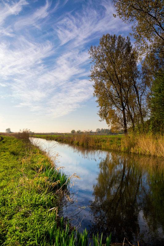 Biesbosch - National Park in the Netherlands