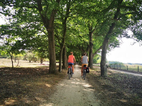 Cycling in Hoge Veluwe