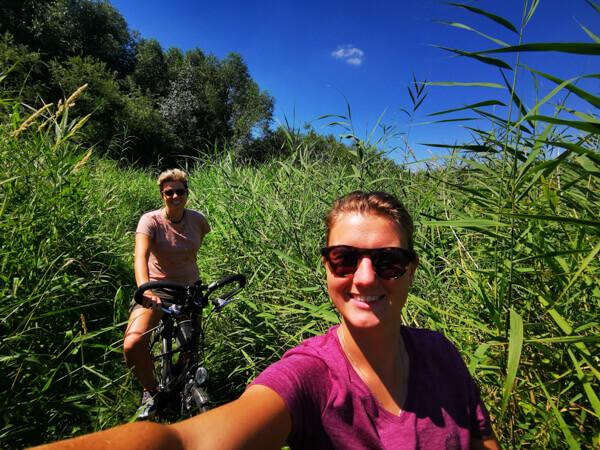 Cycling in the Biesbosch