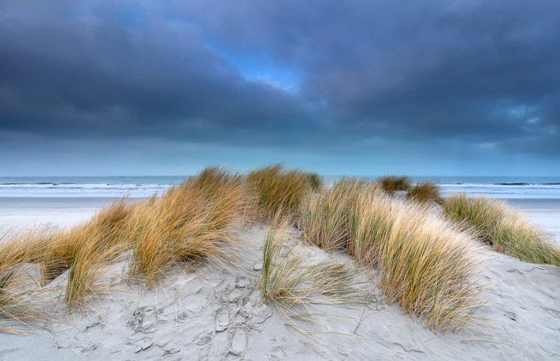 Schiermonnikoog - Netherlands National Park