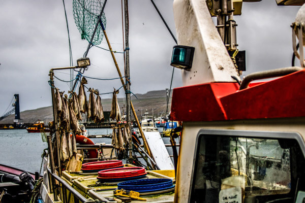 Fishing the Faroe Islands