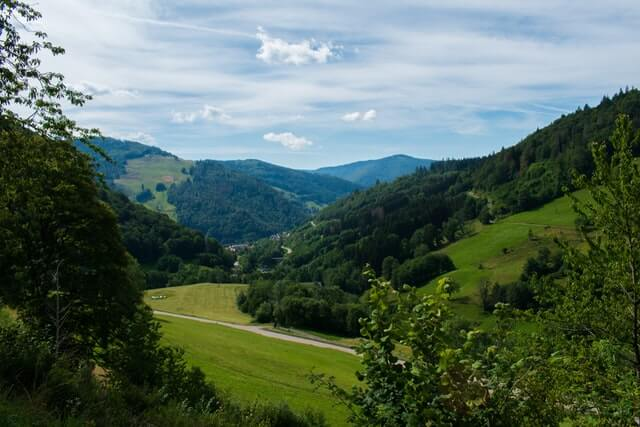Westweg Trail