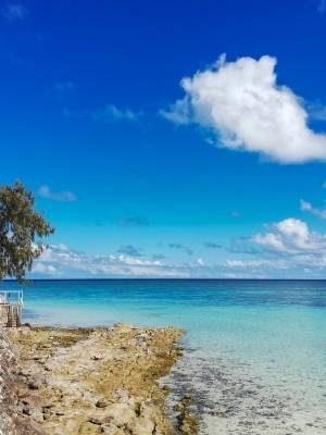 Heron Island - Great Barrier Reef Australia