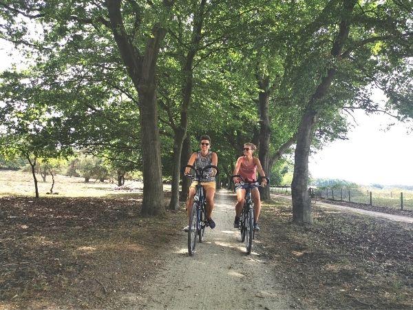 Forest Utrecht
