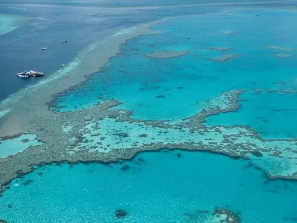 Boat trip Great Barrier Reef Australia