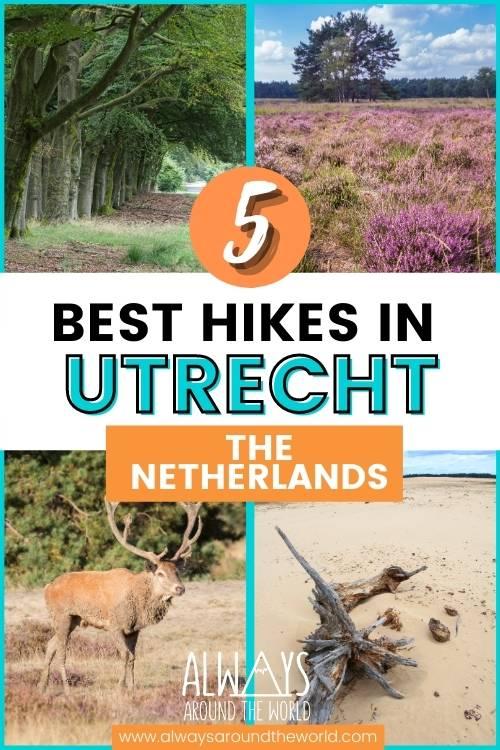 5 best hikes in Utrecht #hiking #netherlands #utrecht
