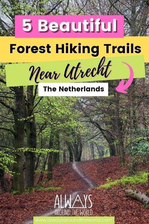Forest hikes in Utrecht