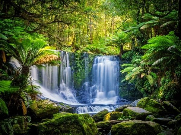 Tasmania Hiking Guide Australia