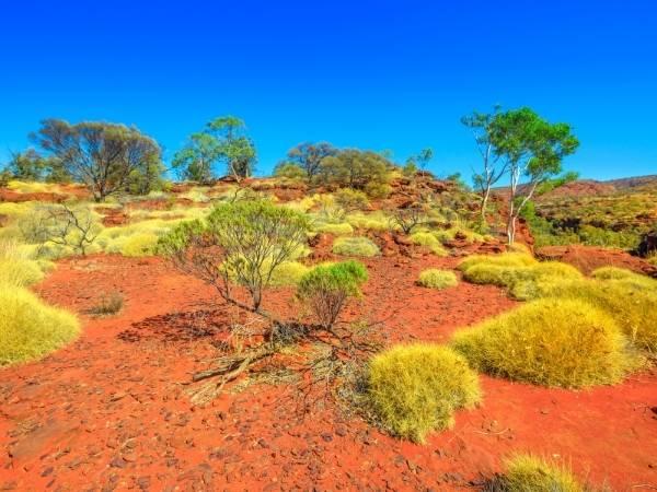 Australia Hiking Central