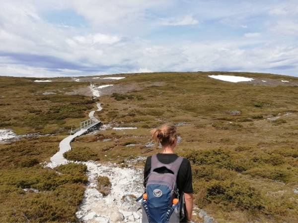 Cradle mountain Tasmania Hiking