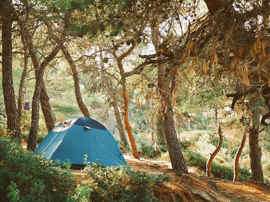 Estonia Free Camping
