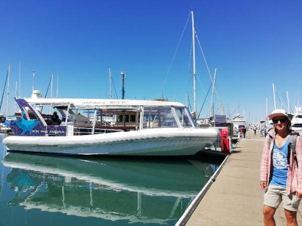 Hervey Bay Whale Tour