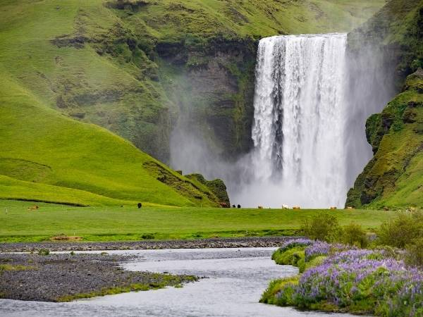Iceland in Summer - Hiking Guide Iceland