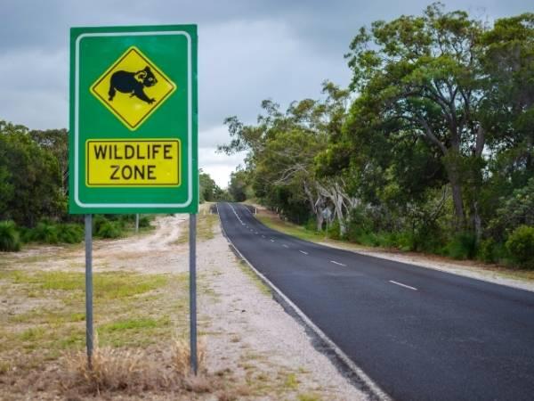 Roads Brisbane Cairns