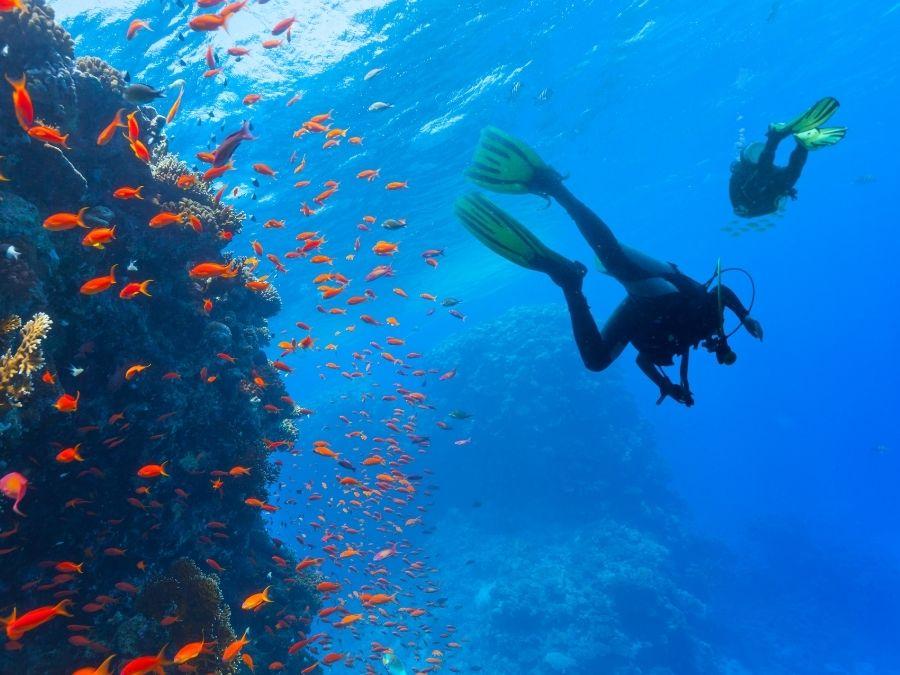 Spain - Scuba Diving