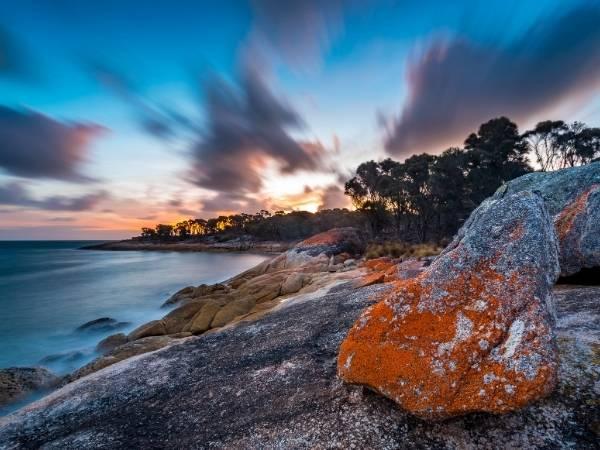Tasmania Flinders Island