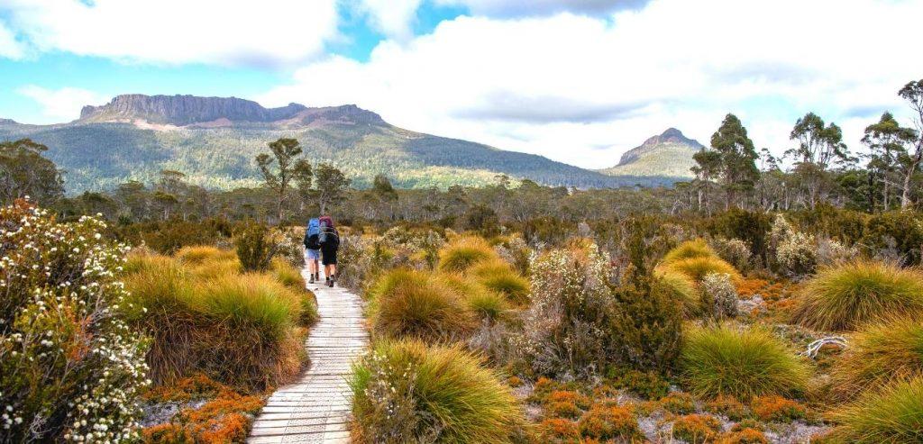 Tasmania hikes header