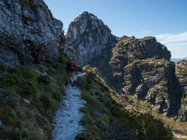 frenchmans cap tasmania hike