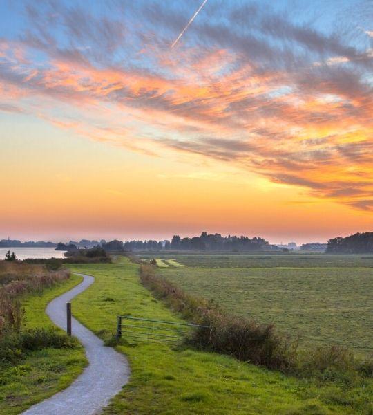 Dutch landscapes Cycling