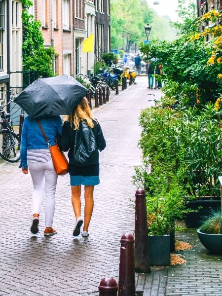 Rain in the Netherlands