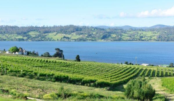 Tamar Valley - Tasmania