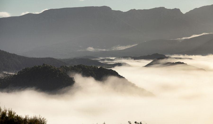 Tarkine National Park - West Coast Tasmania