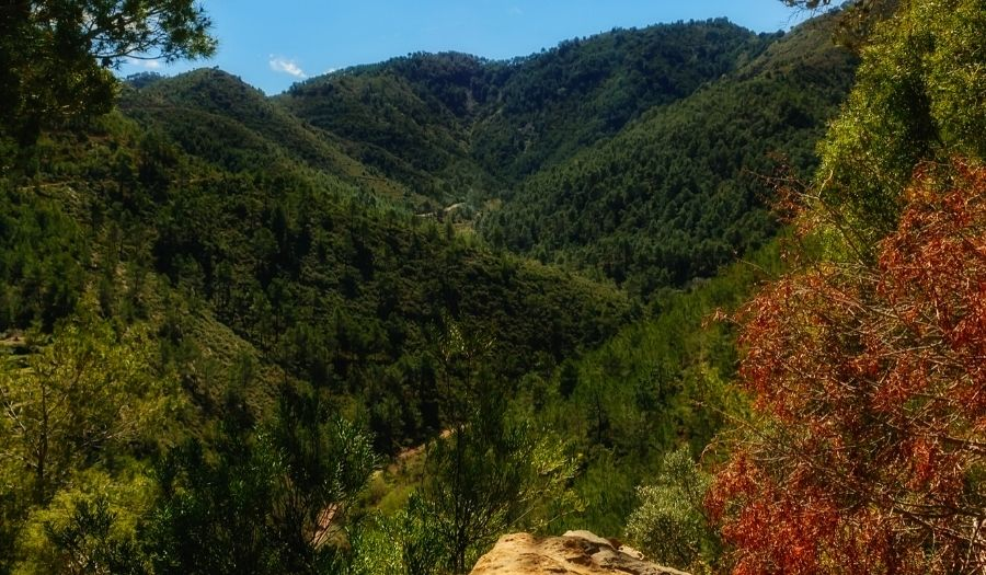 The Sierra Madrona - Spain Mountains