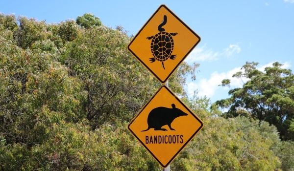 Traffic Sign Australia
