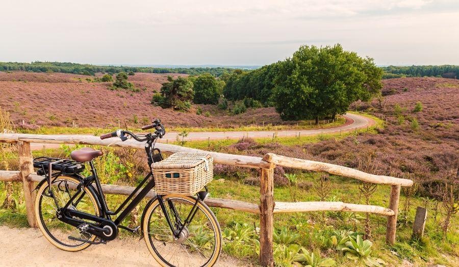Veluwe - Cycling Netherlands