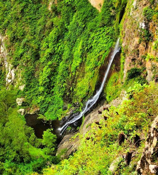 Waterfall La Gomera - Garajonay National Park