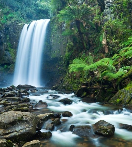 Great Ocean Road - Otway Rainforest Waterfalls