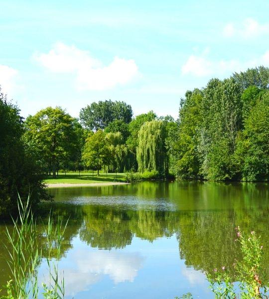 Amsterdamse Bos - Amsterdam Forest Walk