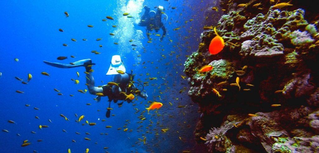Bali Scuba Diving Snorkeling Header