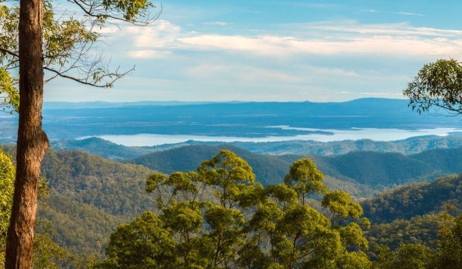 D'Aguilar National Park Brisbane Hikes