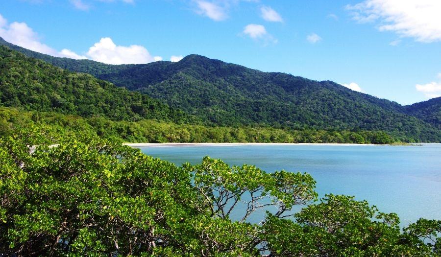 Daintree Rain Forest Australia