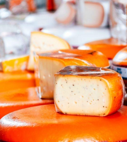 Dutch Cheese tasting walk Amsterdam