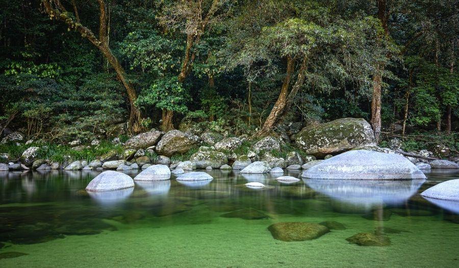 Mossman Gorge Daintree Rain Forest Australia