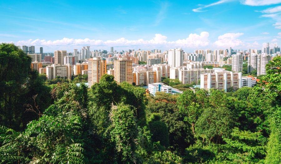 Mount Faber Park Singapore Skyline