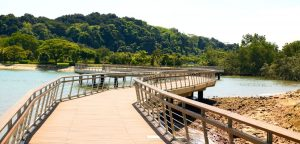Singapore Hikes Header